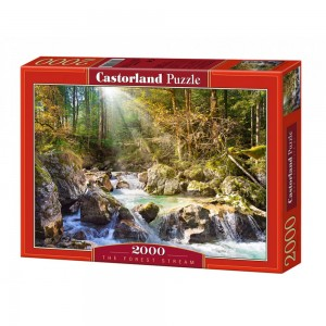 The forest stream Puzzle...