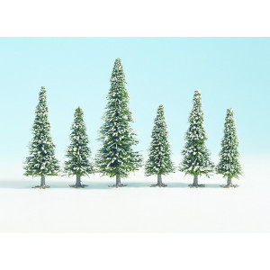 Large pack of snow covered pine trees