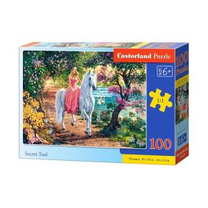 Secret Trail puzzle 100pcs